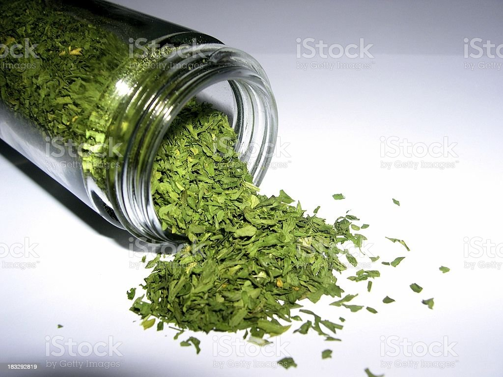 Spices 14 - Parsley royalty-free stock photo
