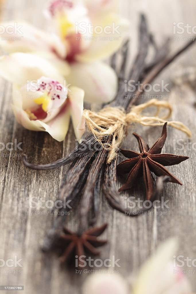 Spices. royalty-free stock photo