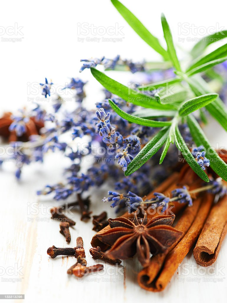 Spices, rosemary and lavender flowers stock photo