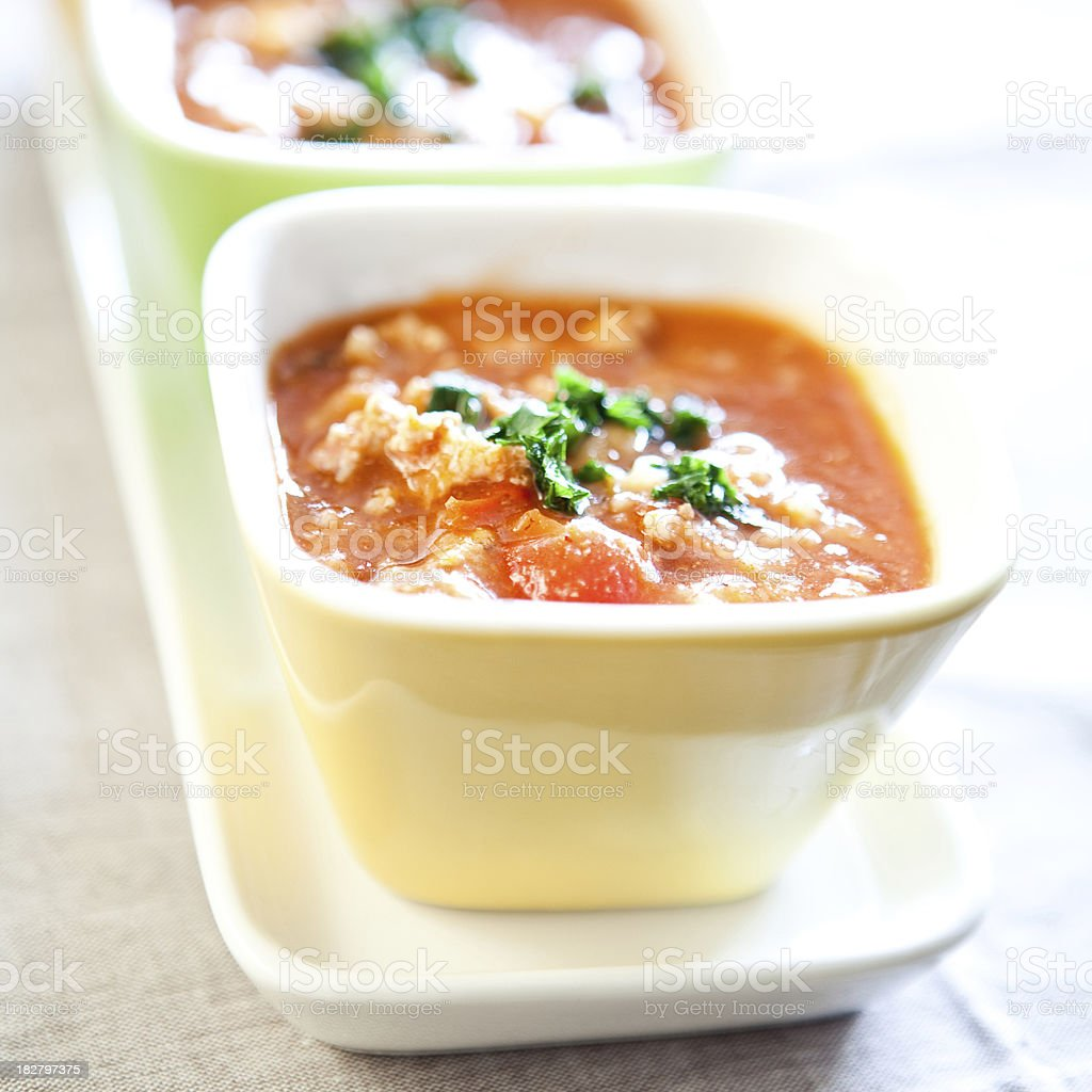 Spicy Mexican Cuisine royalty-free stock photo