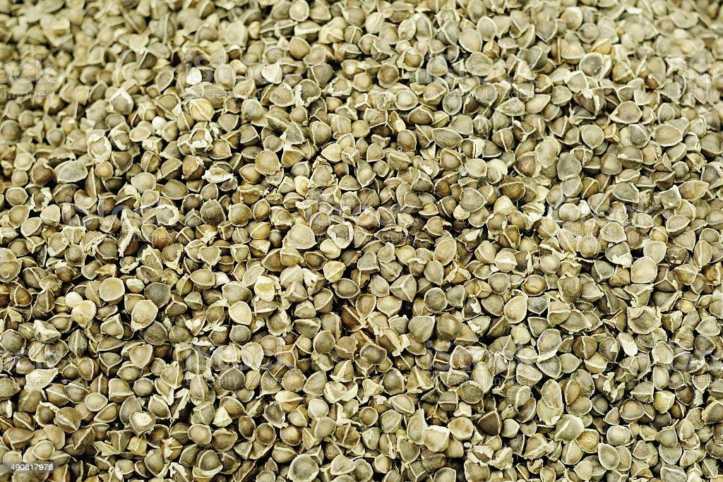Spicy Muzi(Moringa oleifera leaf) stock photo