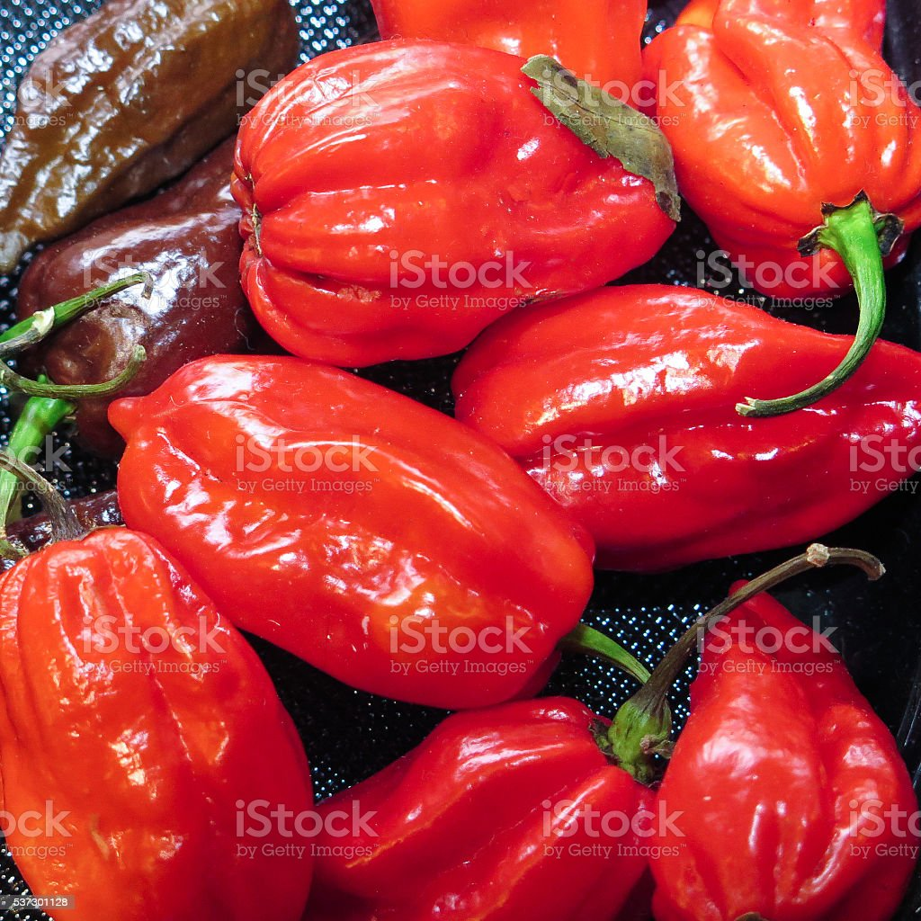 Spicy peppers stock photo