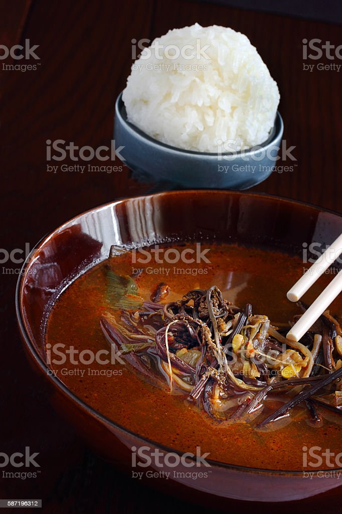 Spicy vegetable soup stock photo