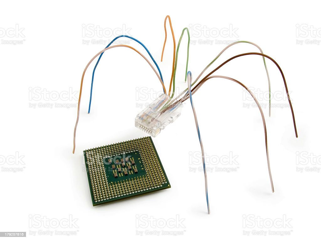 Spider and a microcircuit royalty-free stock photo