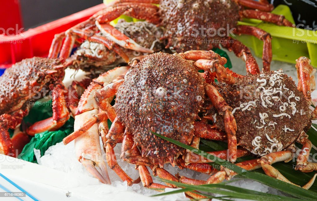Spider crabs for sale at French provincial market stock photo