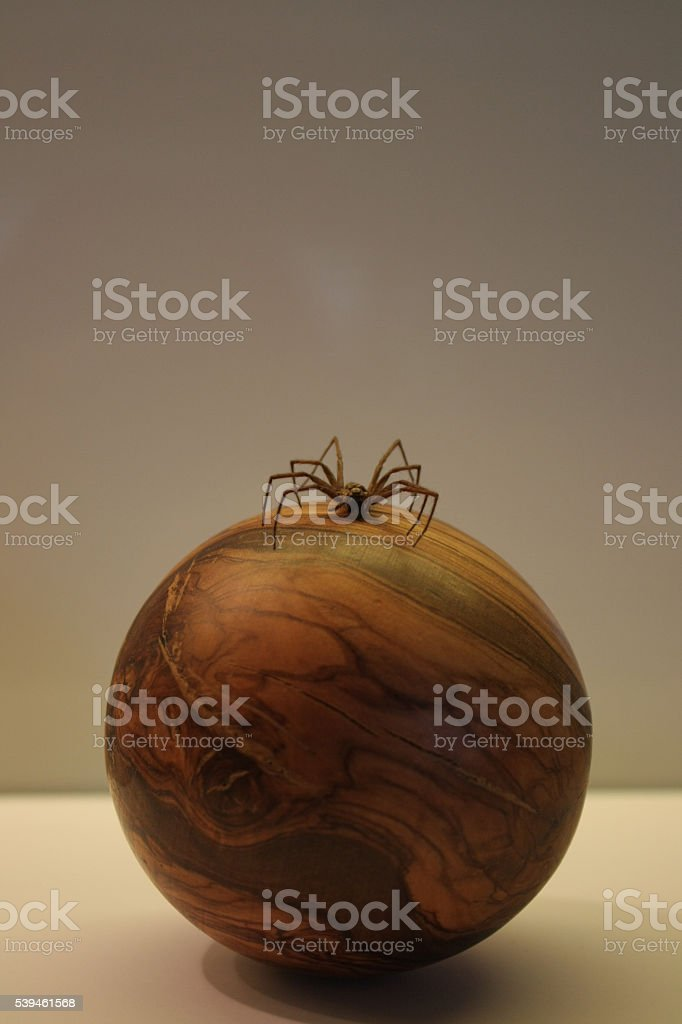 spider-on-wooden-sphere stock photo