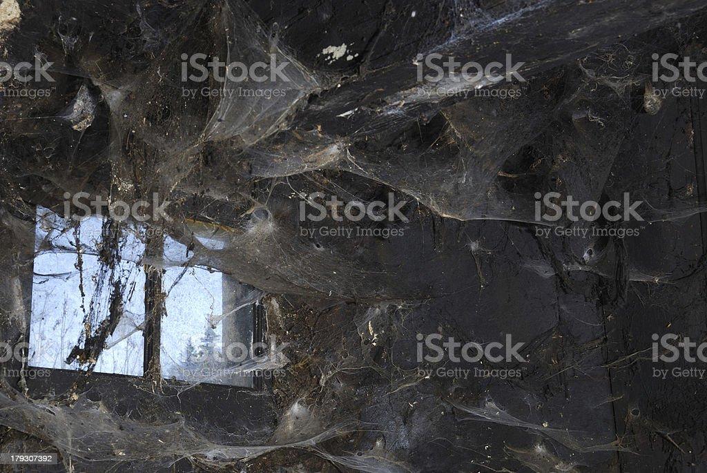 Spiderwebs univers stock photo