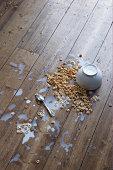 spilled breakfast cereal on floor