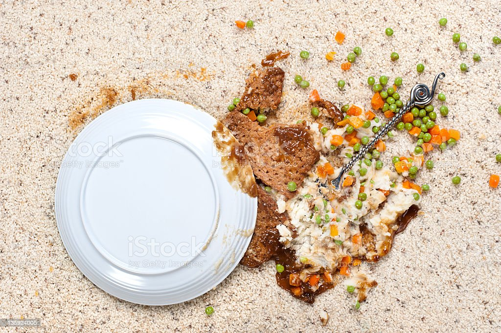 Spilled plate of food on carpet stock photo
