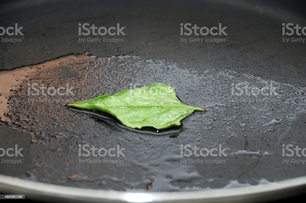 Spinach cooking stock photo