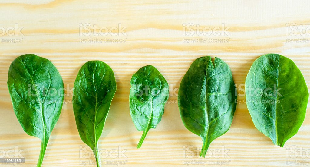 Spinach leaf close up stock photo