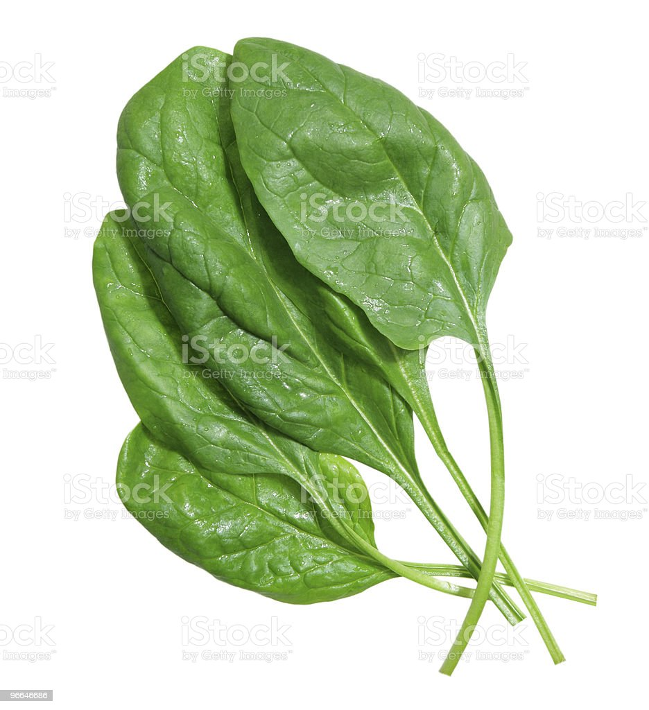 Spinach leaves on white background stock photo