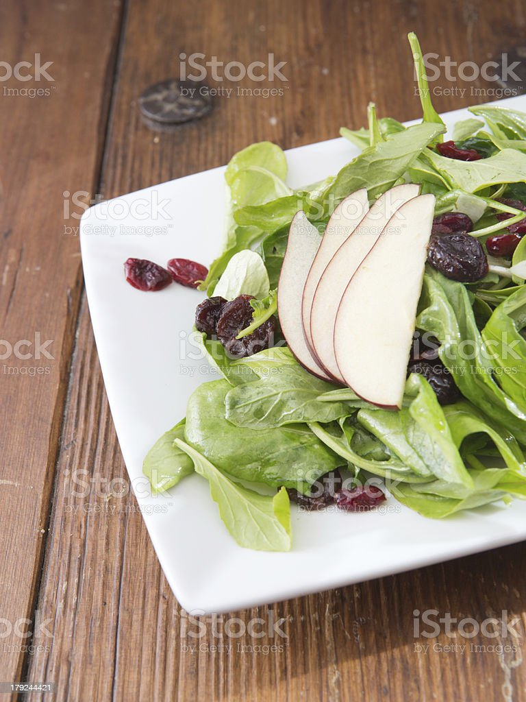 Spinach, Pear and Cranberry Salad royalty-free stock photo