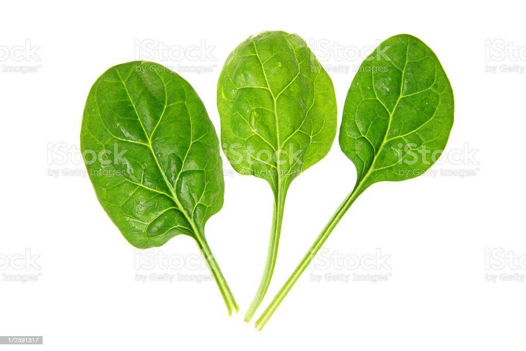Spinach series on white background stock photo