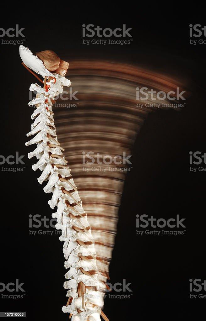 Spine movement stock photo