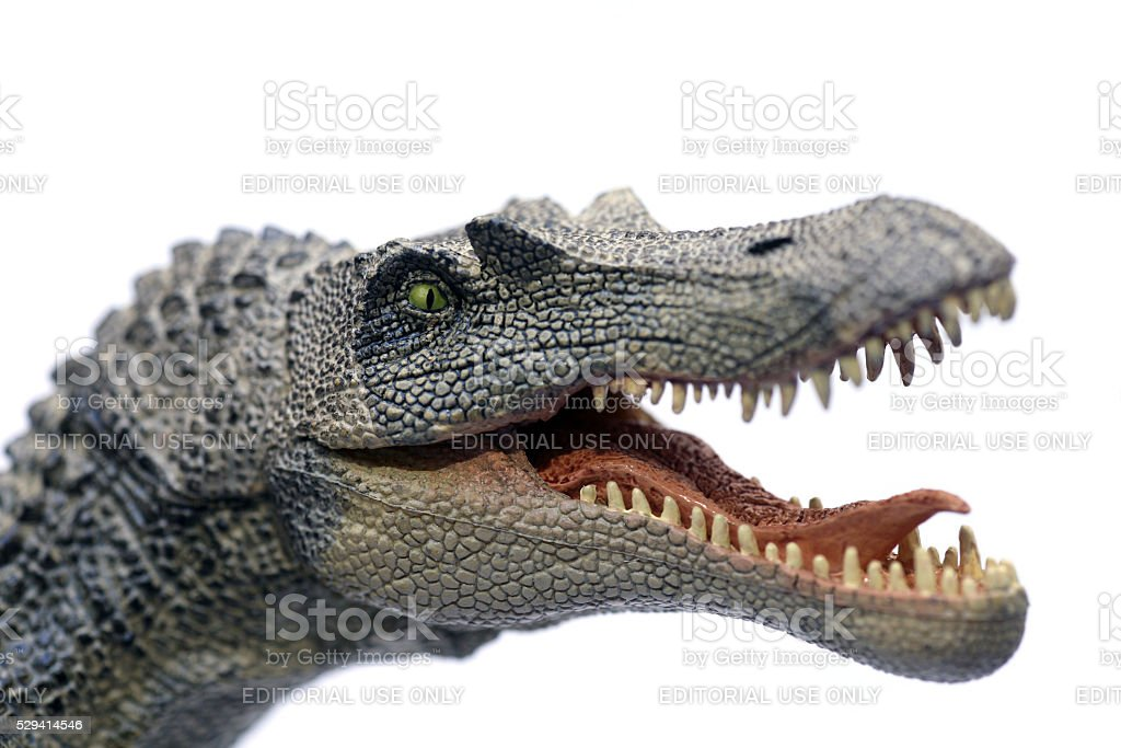 Spinosaurus plastic model portrait stock photo