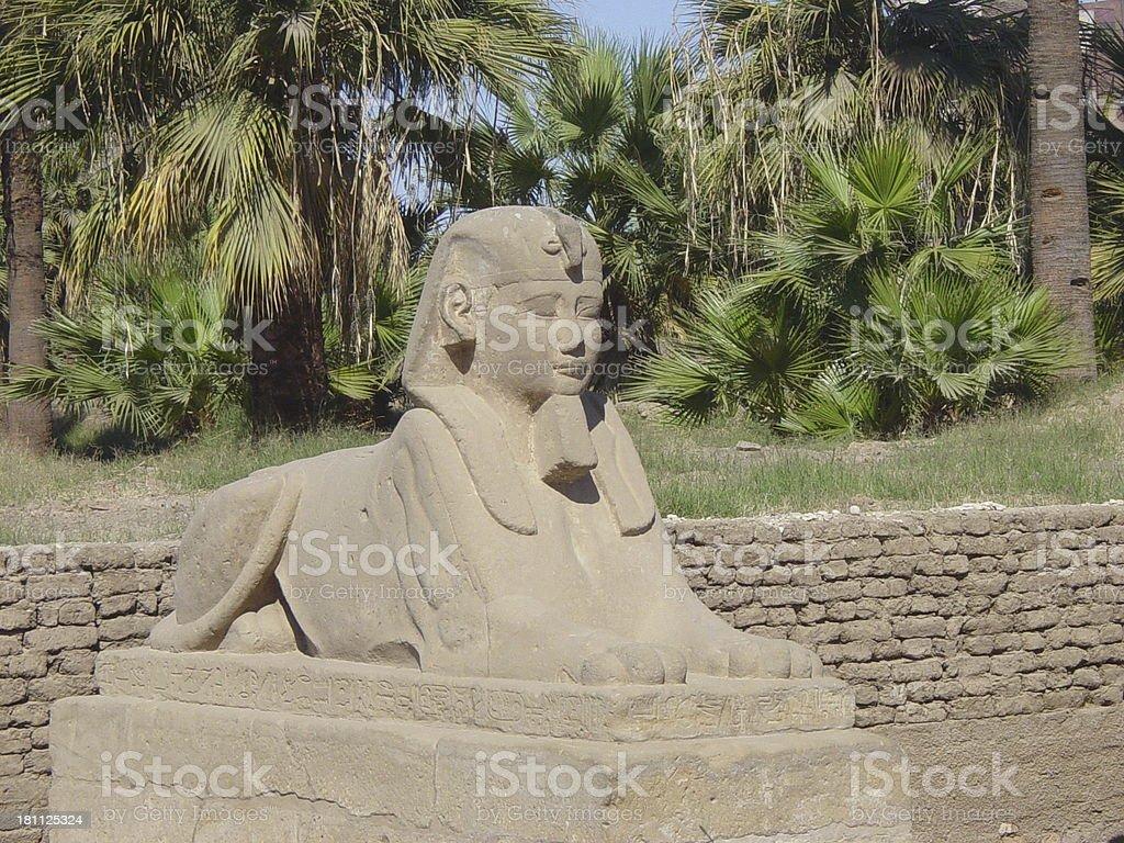 Spinx at Karnak stock photo