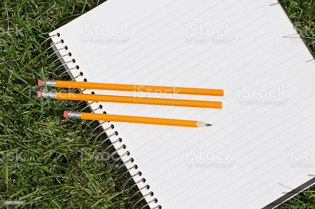 Spiral Notebook Paper and Pencils Outdoors on Green Grass stock photo
