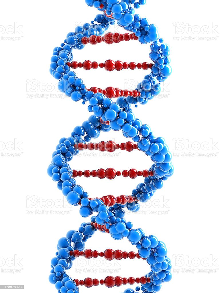 DNA spiral on white (Clipping path included) royalty-free stock photo