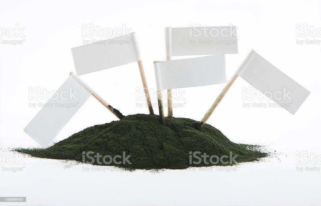 Spirulina powder isolated on white background stock photo