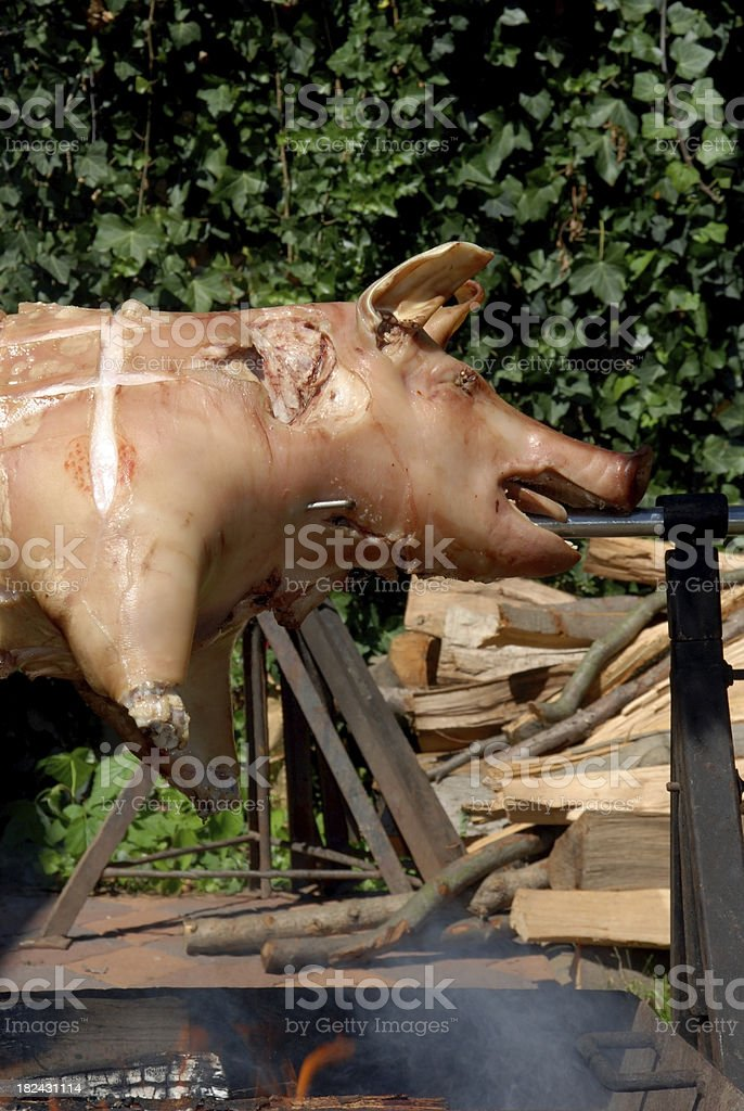 Spit roasted pig royalty-free stock photo