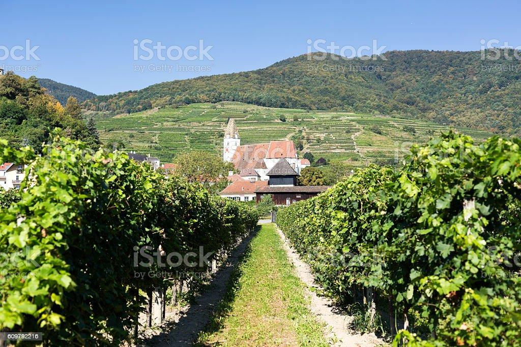 Spitz Church and Vineyards stock photo