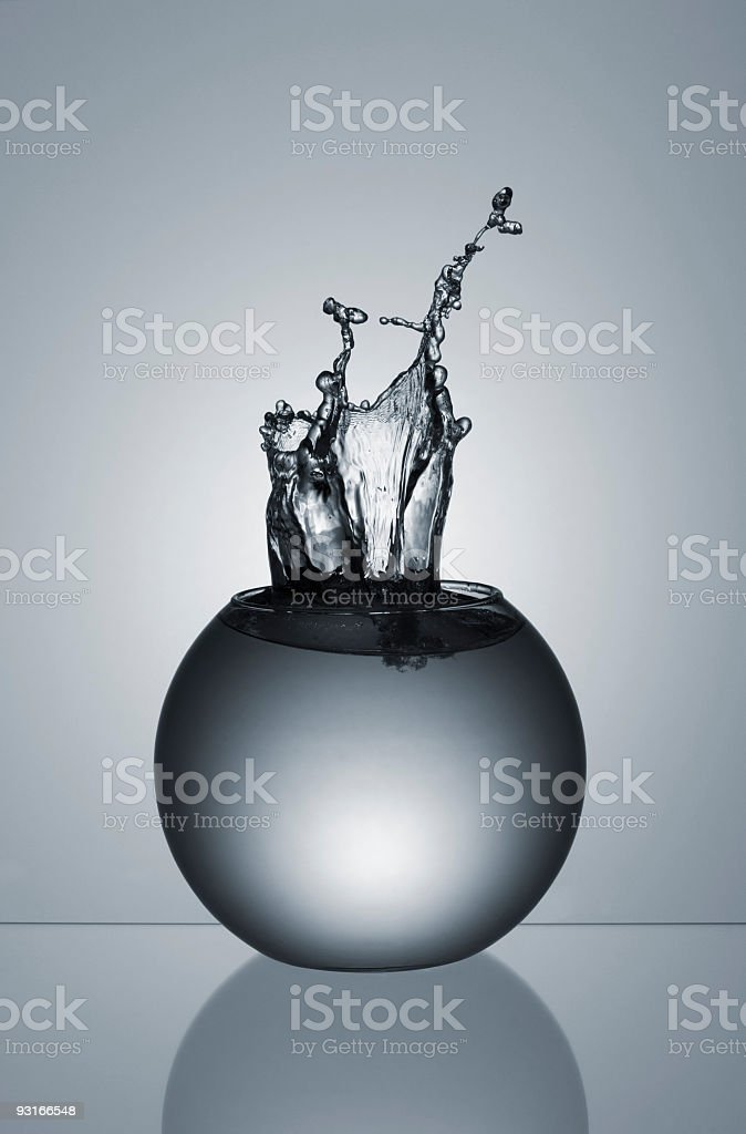 Splash in a  Fishbowl stock photo