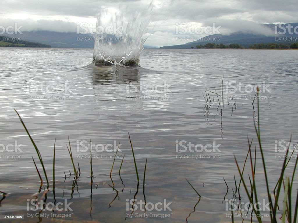 Splash! royalty-free stock photo