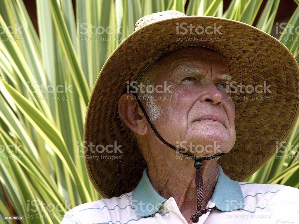 Splendid old age royalty-free stock photo