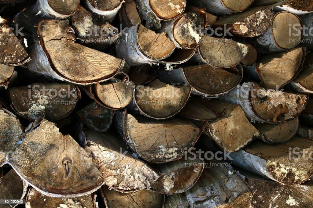 Split birch stock photo