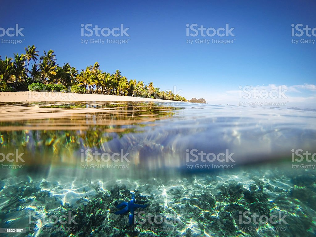 Split shot of tropical island stock photo