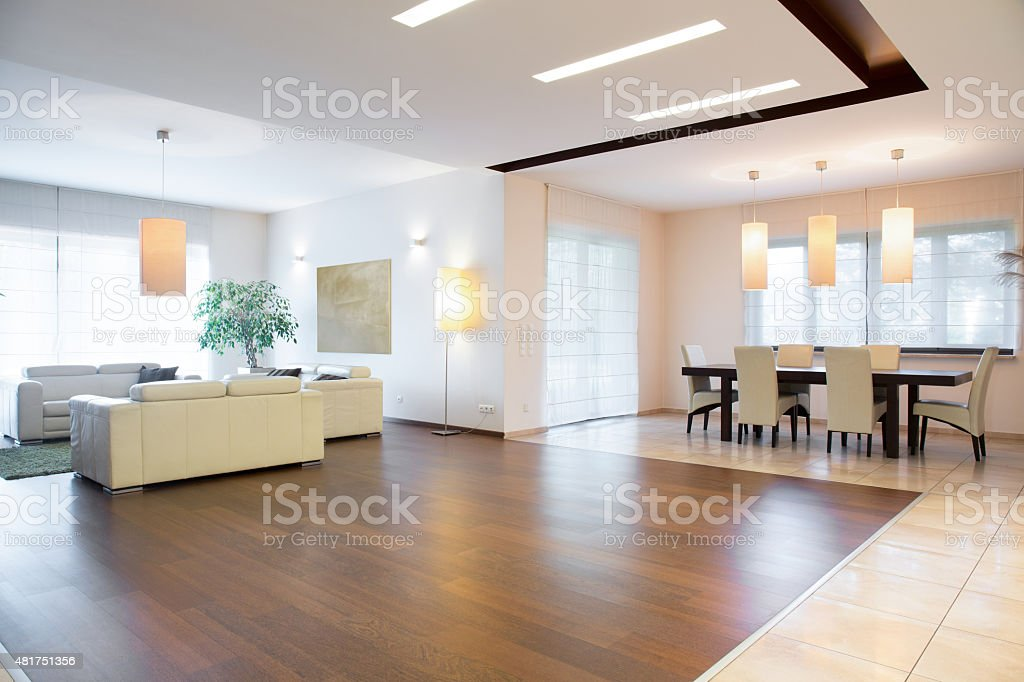 Spocious drawing room stock photo
