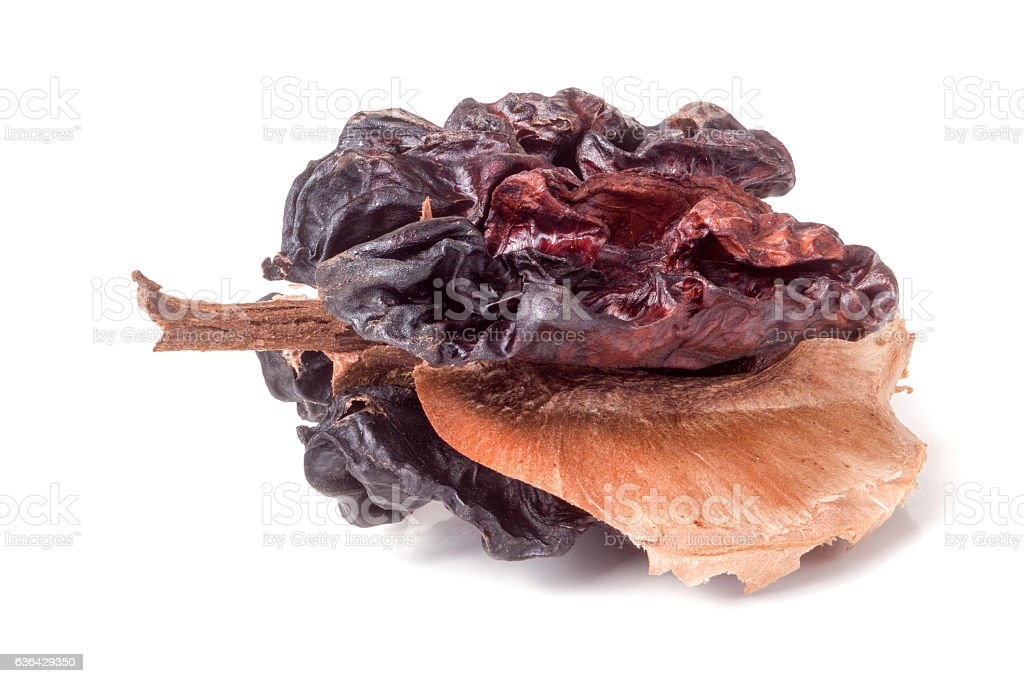 spoiled walnut isolated on a white background closeup stock photo