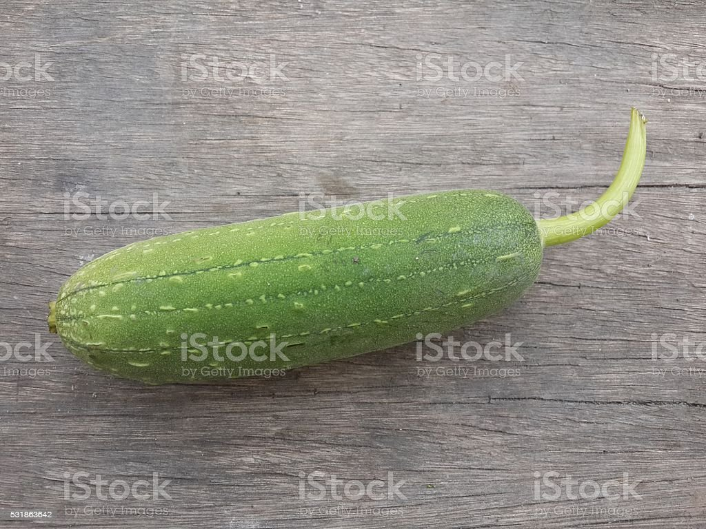 Sponge Gourd on wood floor stock photo