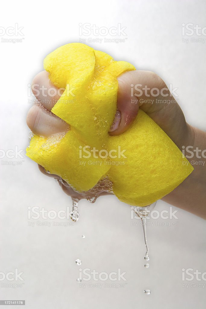 sponge with drip royalty-free stock photo
