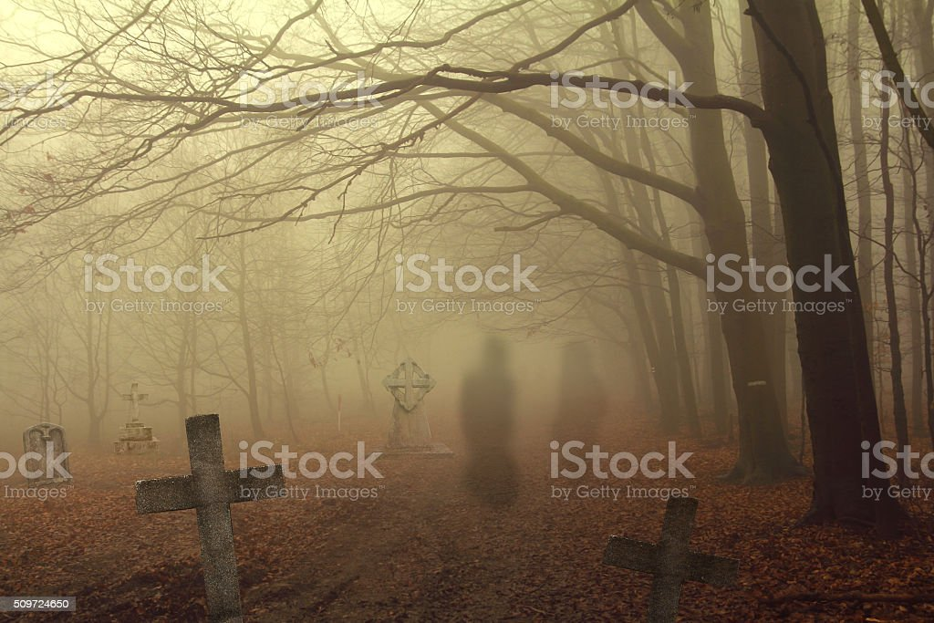 spooky cemetery in forest stock photo