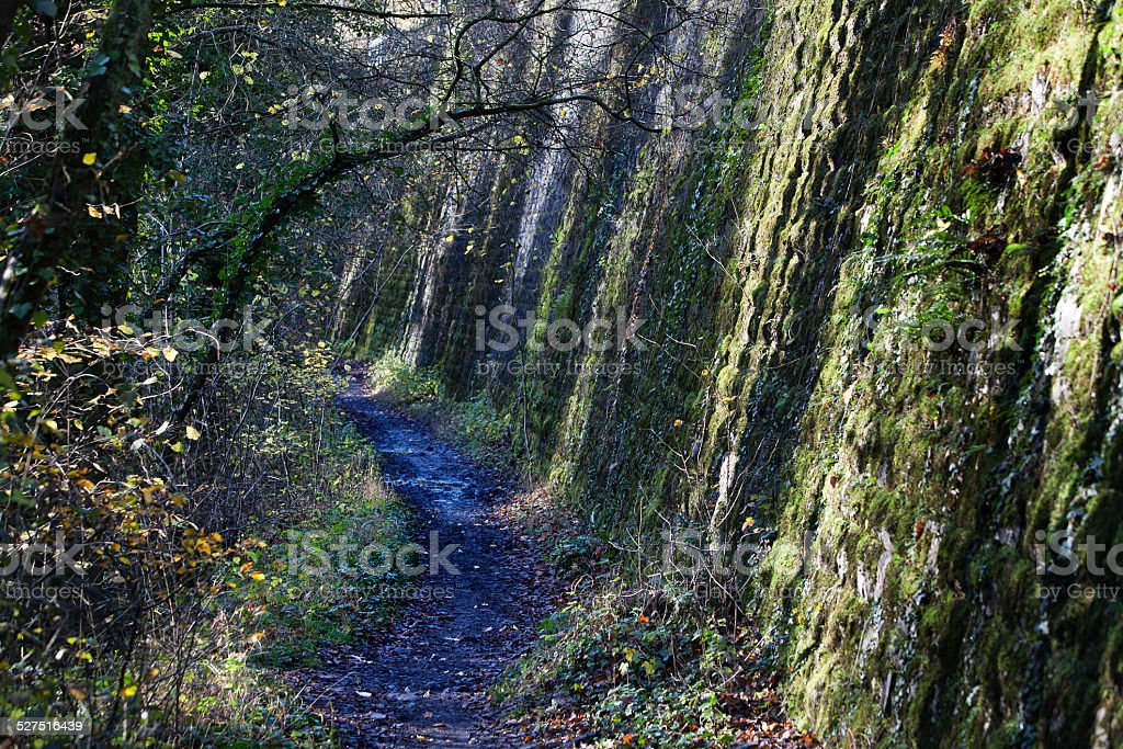 Spooky footpath stock photo