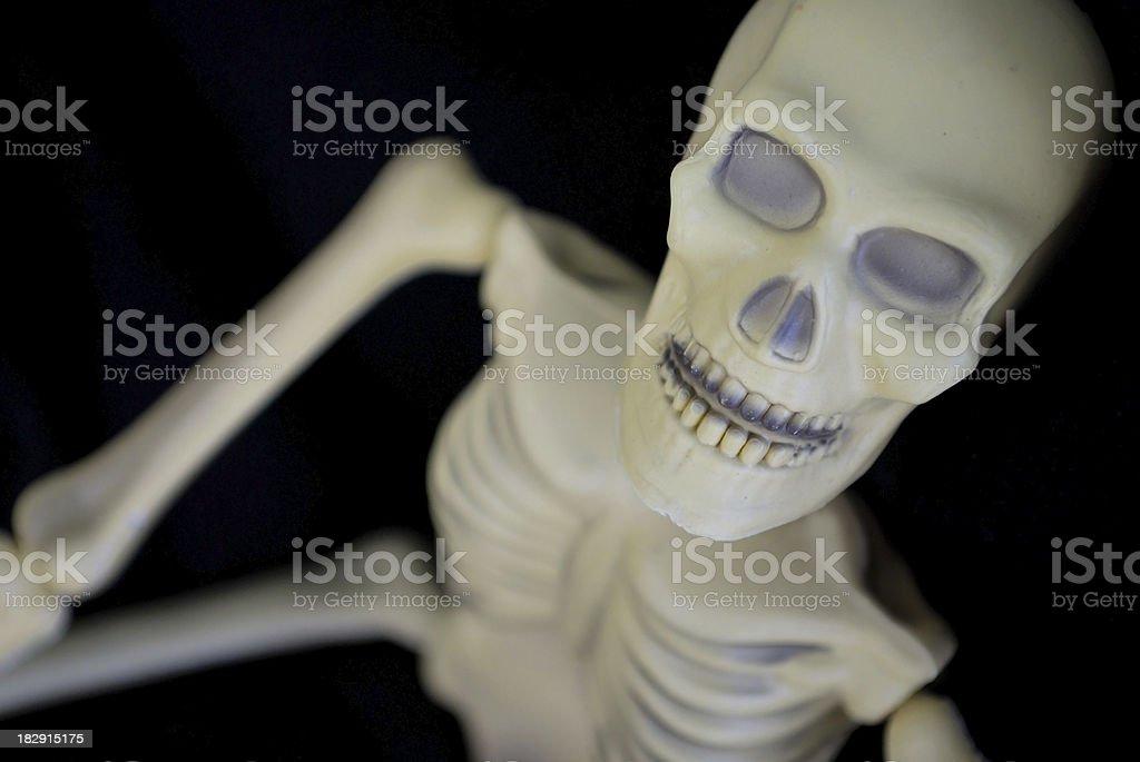 Spooky Halloween Skeleton Stares Into the Camera stock photo