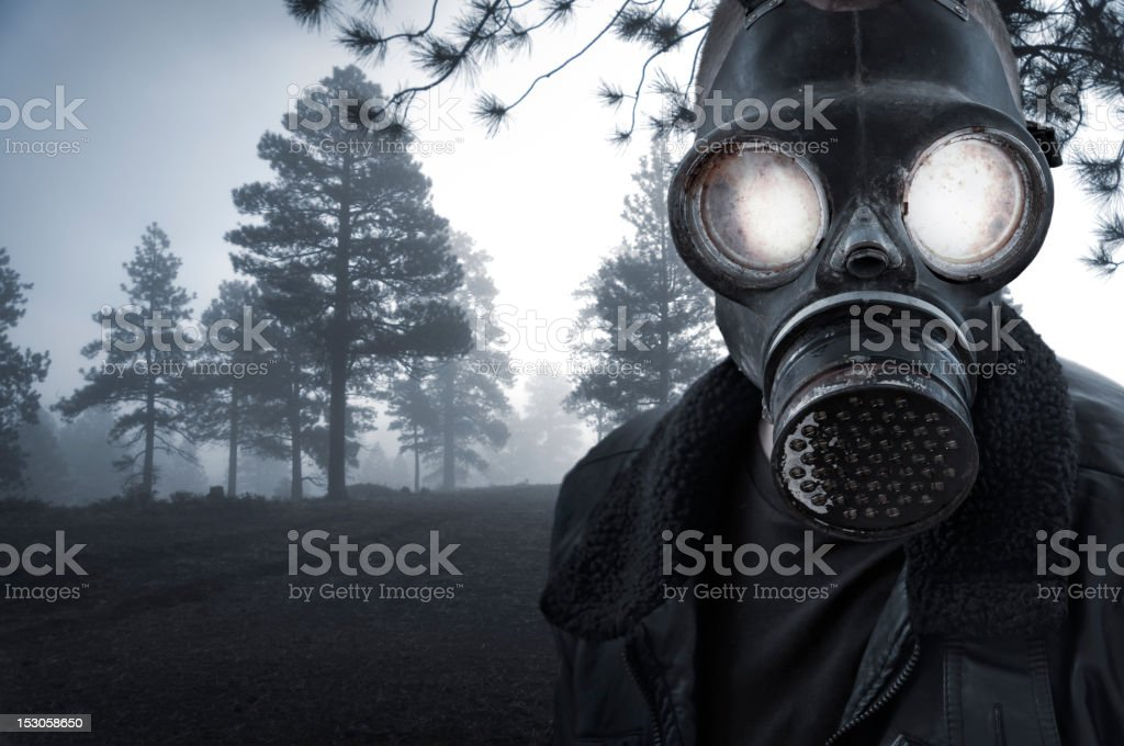 Spooky Masked Character in Ethereal Woods stock photo
