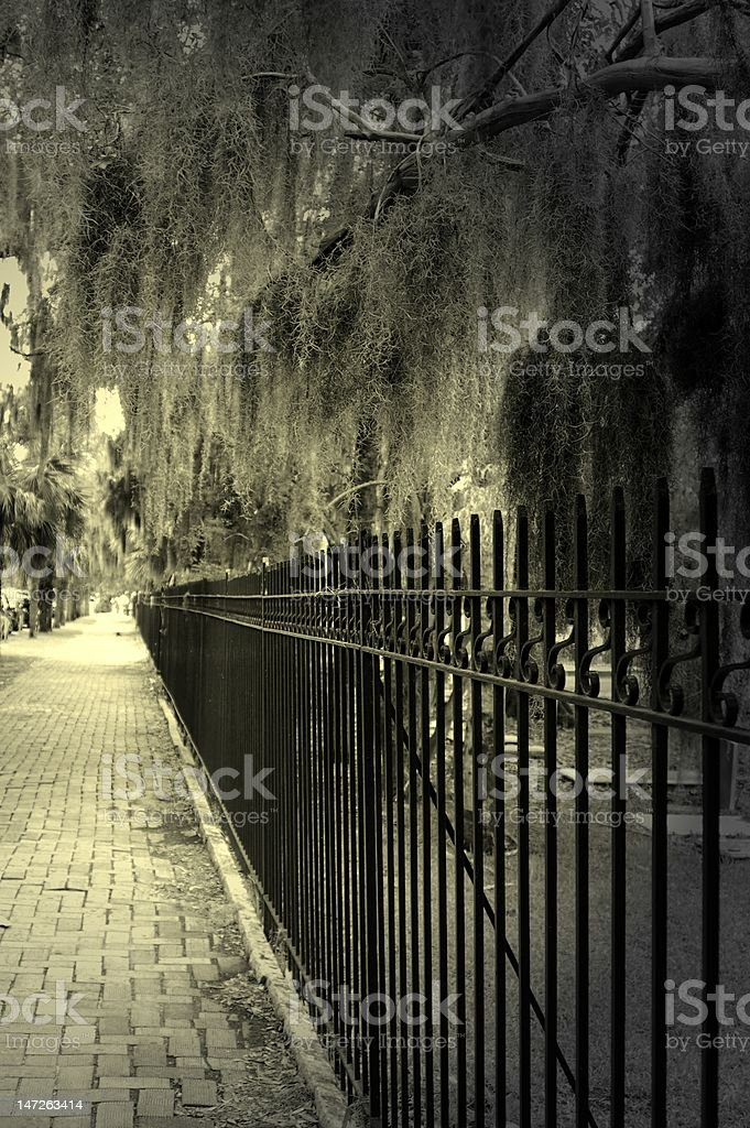 Spooky sidewalk in Savannah with gate next to cemetery stock photo