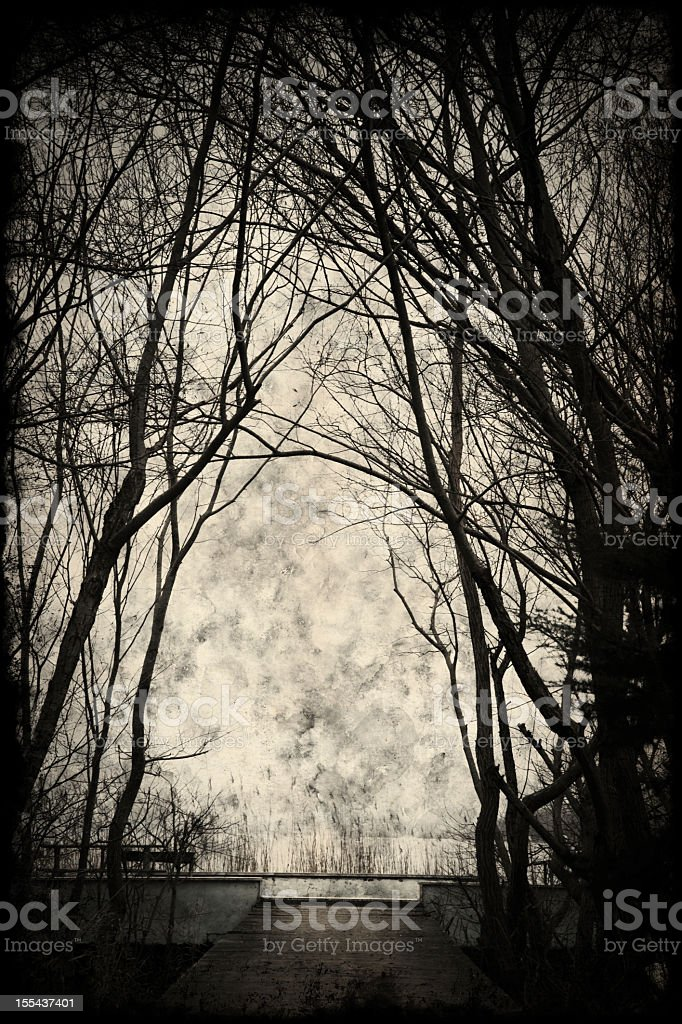 A spooky silhouette with trees and a great sky royalty-free stock photo