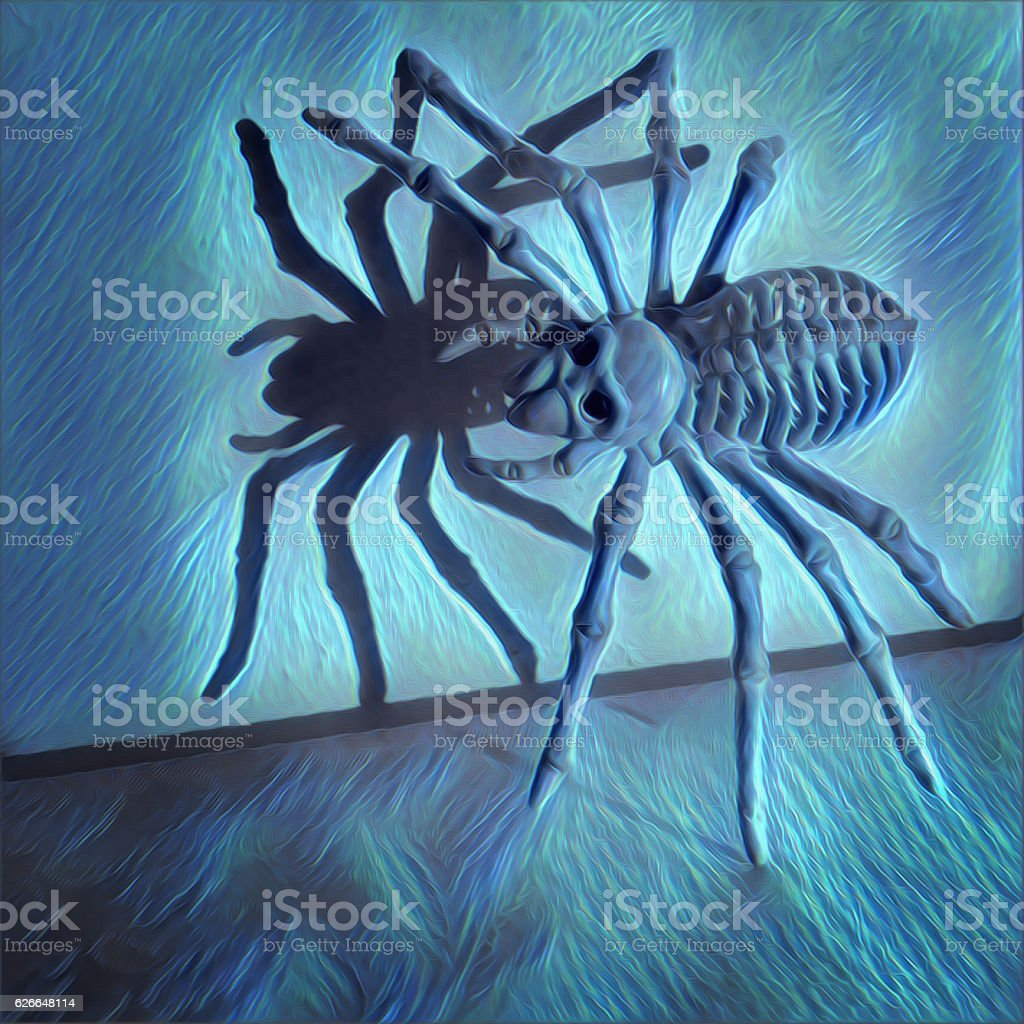 Spooky spider with shadow illustration vector art illustration