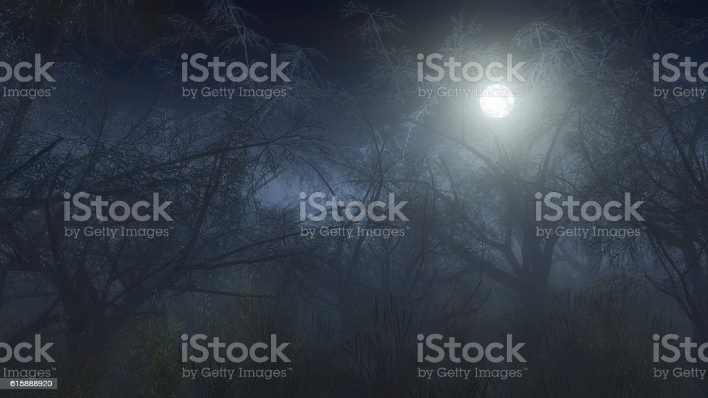 Spooky winter forest in the mist at moonlight. stock photo