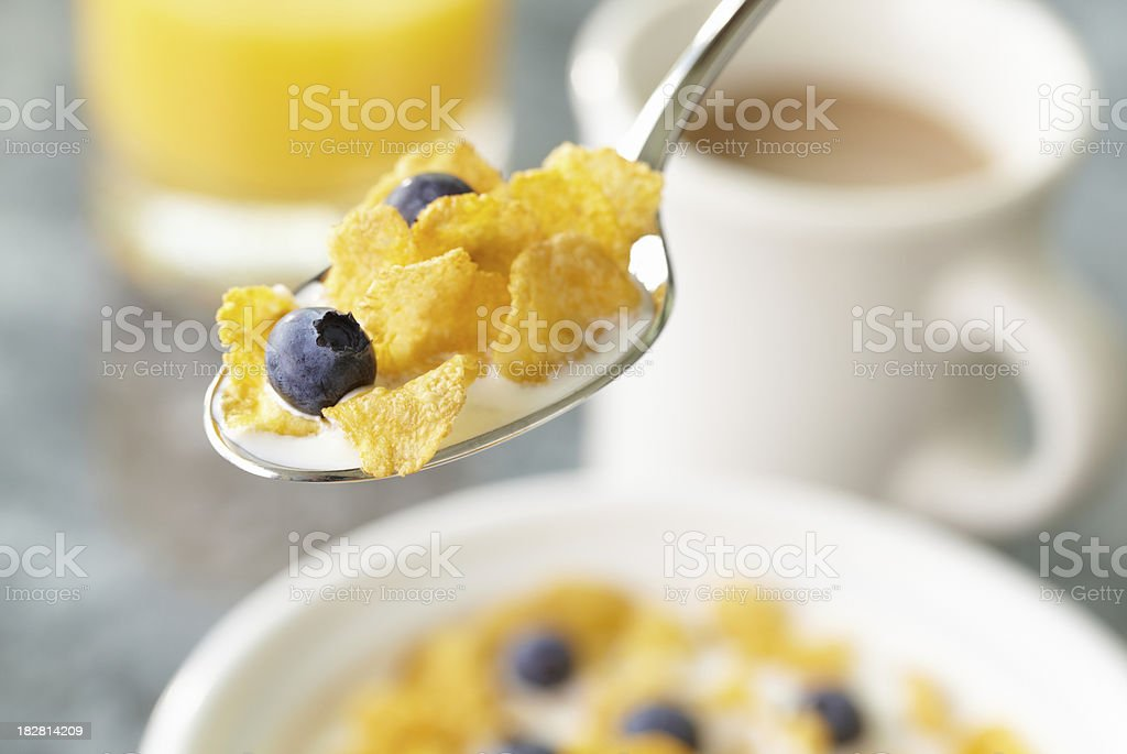 Spoonful of cereal royalty-free stock photo