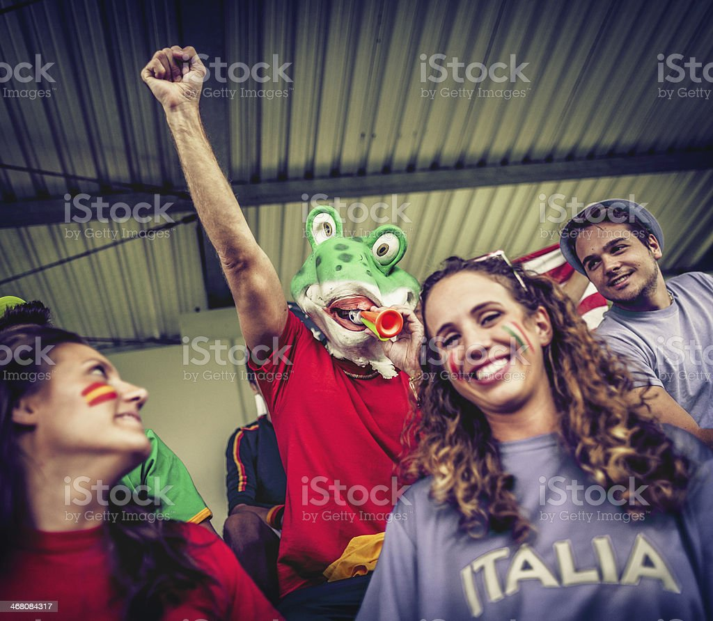 Sport supporters: a frog fan of the Spanish team royalty-free stock photo