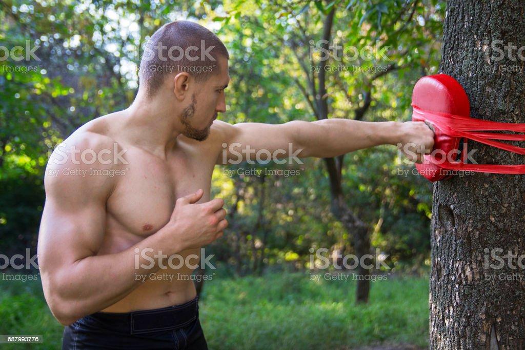 Sports athletic man boxer stock photo