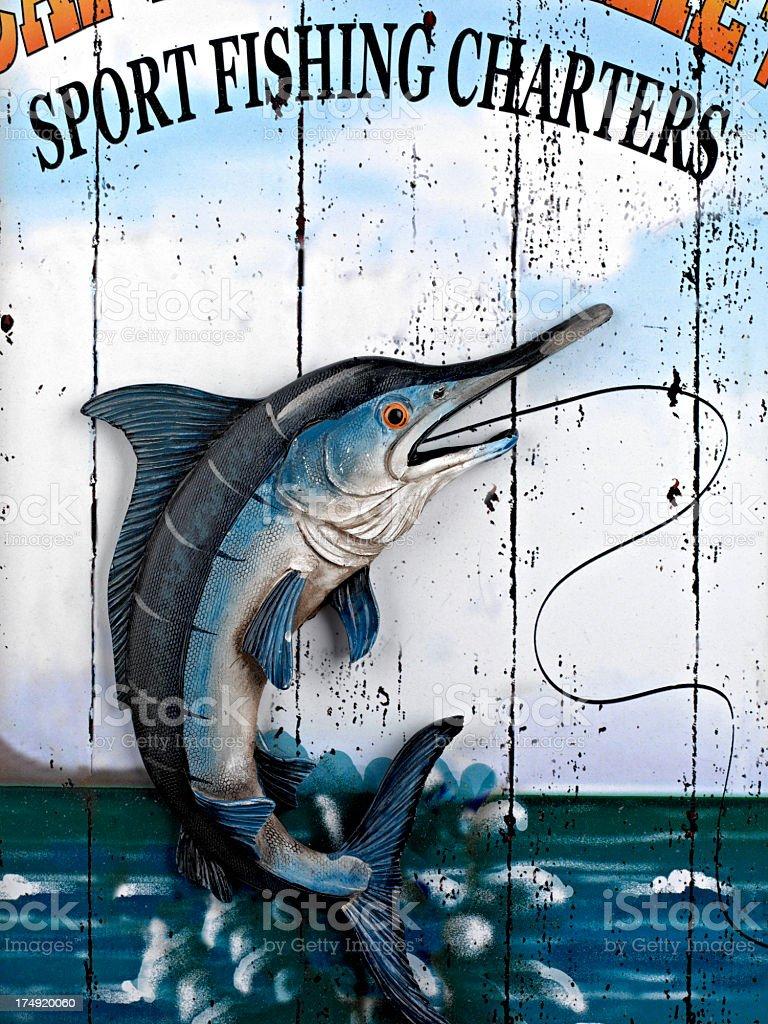 Sports Fishing royalty-free stock photo