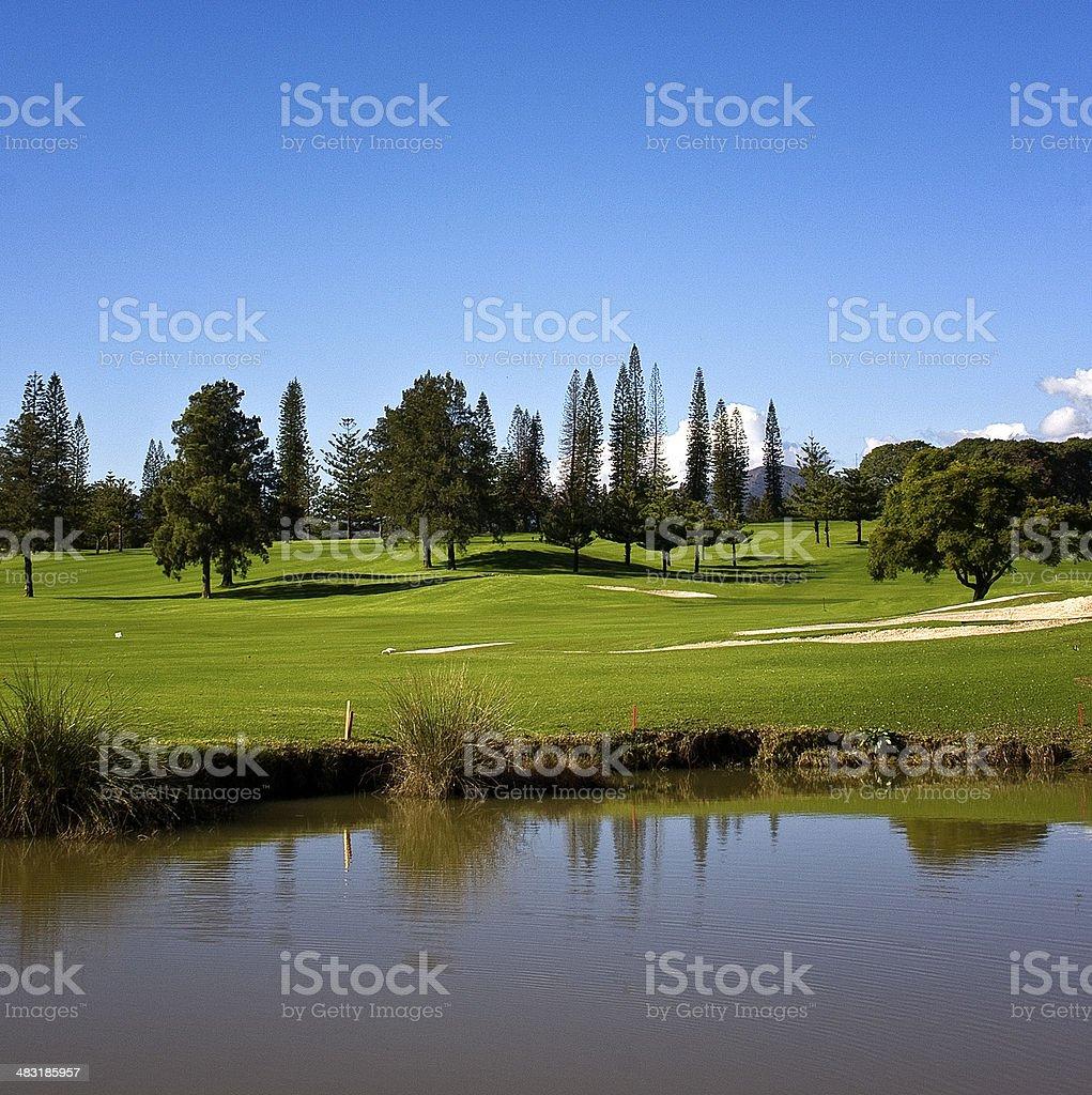 Sports golf stock photo
