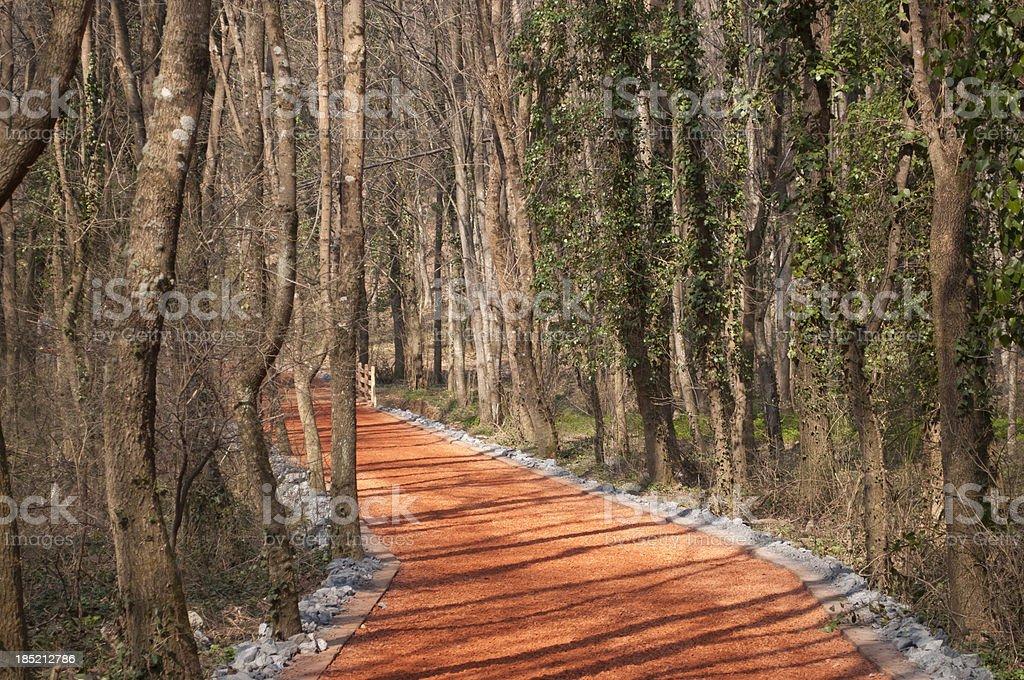 Sports path royalty-free stock photo