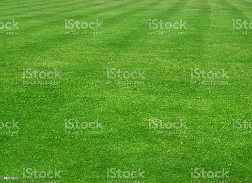 Sports Pitch royalty-free stock photo